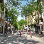 Things to Know When Starting a Small Biz in Vienna